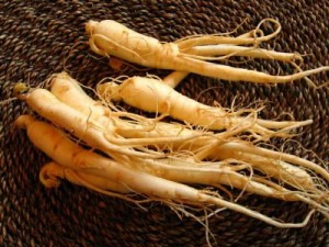 Holistic Winter Survival Tips: Ginseng