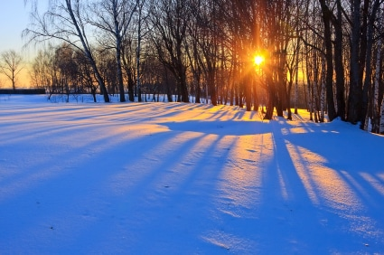 The Winter Solstice:  Contemplate The Light