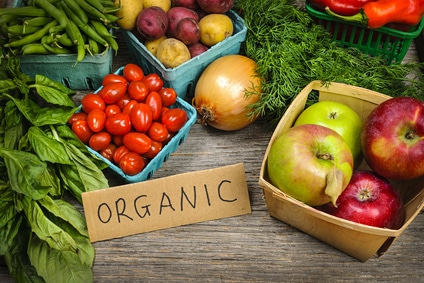 Organic Farming – Why Support It?