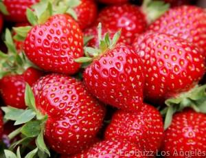 Spring Strawberry Bliss