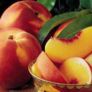 Peach-y Keen